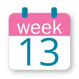 Εβδομάδα κύησης 13η