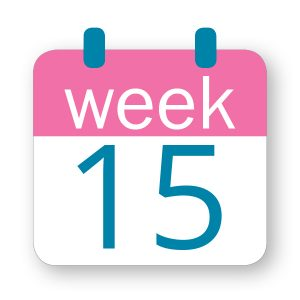 Εβδομάδα κύησης 15η