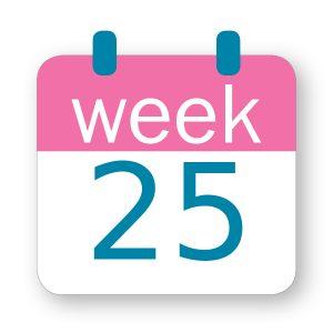 Εβδομάδα κύησης 25η