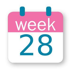 Εβδομάδα κύησης 28η