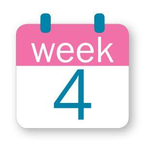 Εβδομάδα κύησης 4η